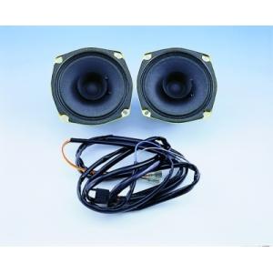 30 Watt Rear Speaker Kit With Wiring Kit