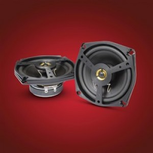 Goldwing Two Way Speaker