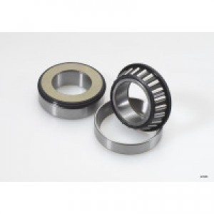 GL1800 All Balls Steering Head Bearings